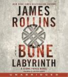 the bone labrynith